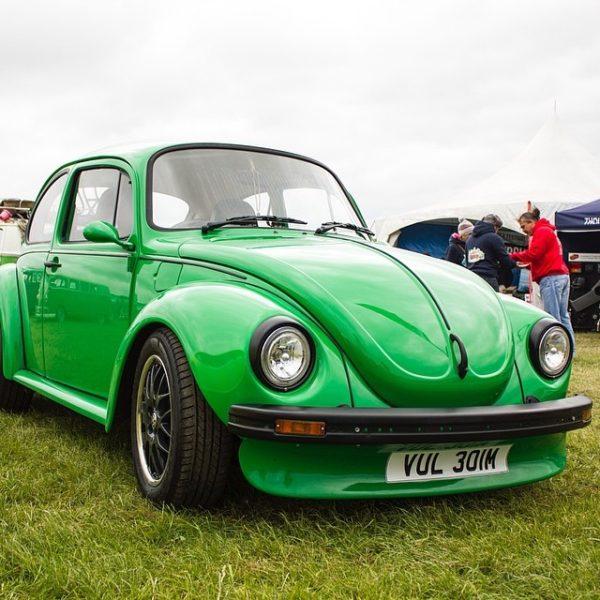VW Apex Festival