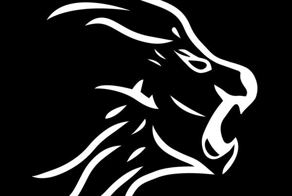 Branding / Logo Design